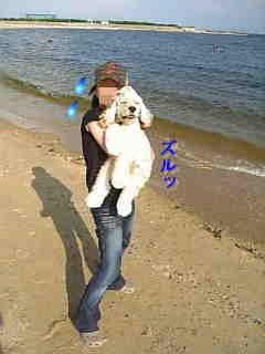 芦屋浜2.jpg