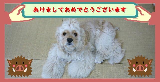 ブログ初め1.jpg