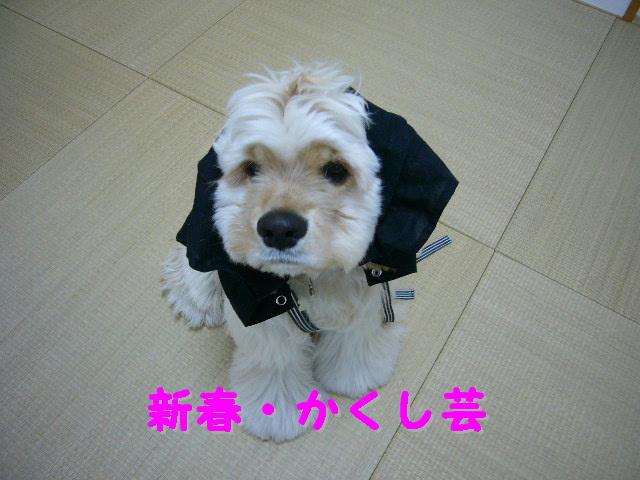 ブログ初め3.jpg