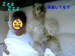 かくれんぼ2-8.jpg