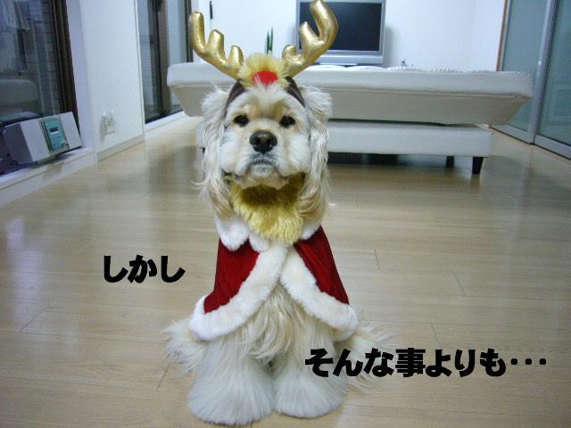 クリスマスオフ1.jpg