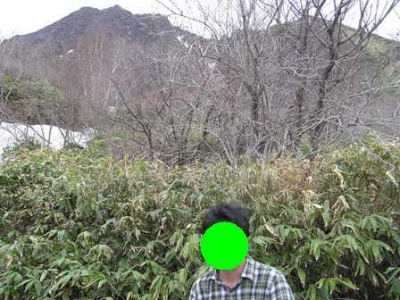 帰りの登山道.jpg