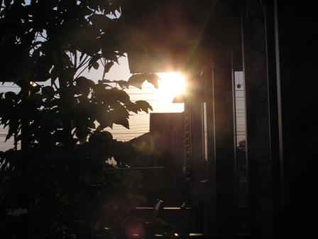 秋の日の夕暮れ.jpg