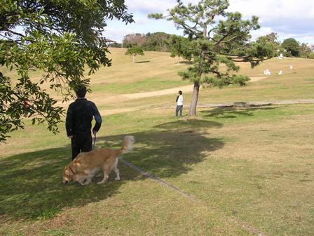 三崎公園.jpg