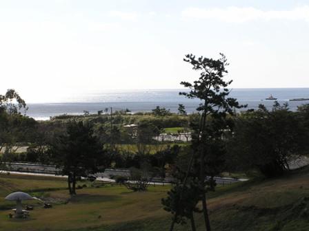 公園からの景色.jpg