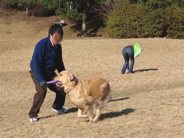 愛鷹運動公園2.jpg