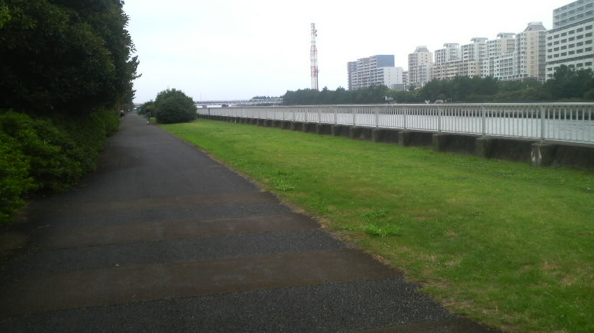 201107310851.jpg