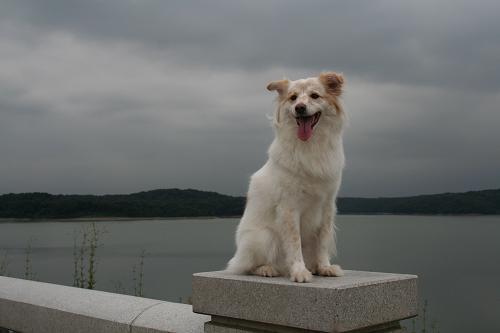 9.11狭山湖5