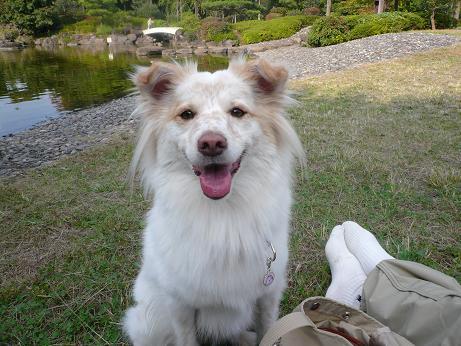 10.30森公園笑顔