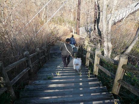 11.26弁天吊り橋へ