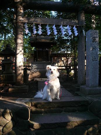 1.1巽神社