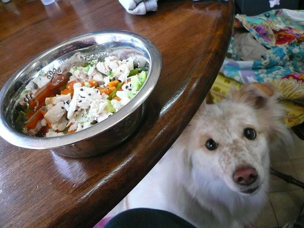 1.23早く食べたい・・・