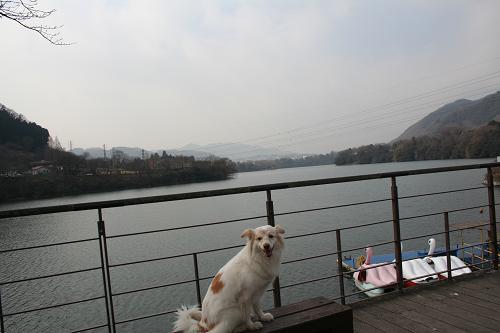 2.7津久井湖