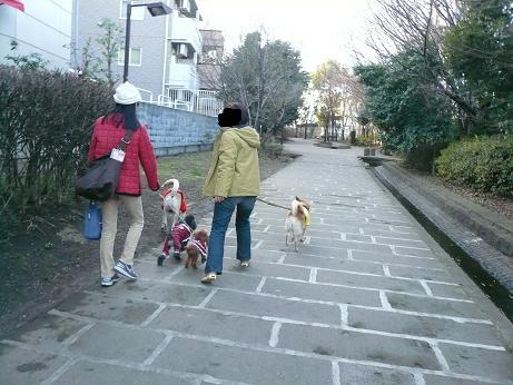 2.15散歩2