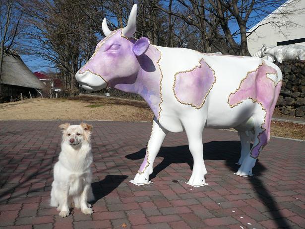 2.16モコと牛さん2