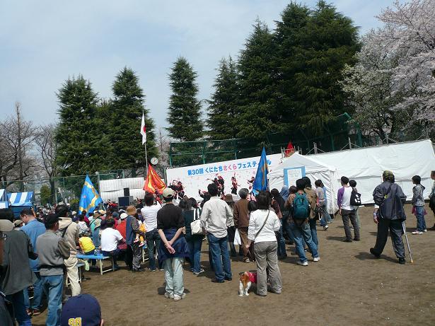 4.1桜祭り会場