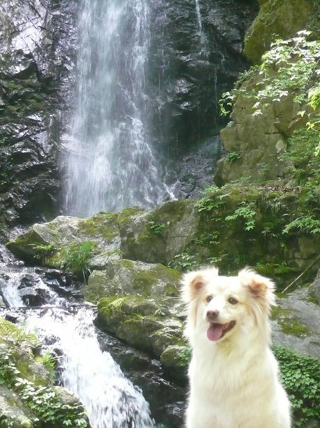 5.3滝とモコ2
