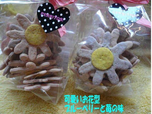 5.8わんこクッキー2