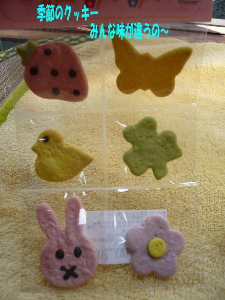 5.8わんこクッキー3