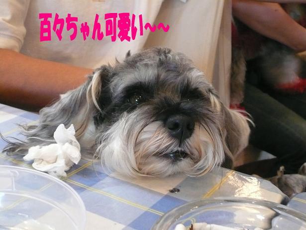 5.23可愛い〜