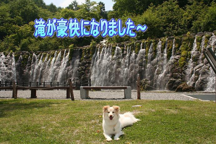 6.6明神の滝ドバー
