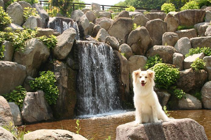 6.6岩清水の滝とパチリ
