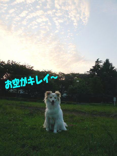 7.24お空がキレイ