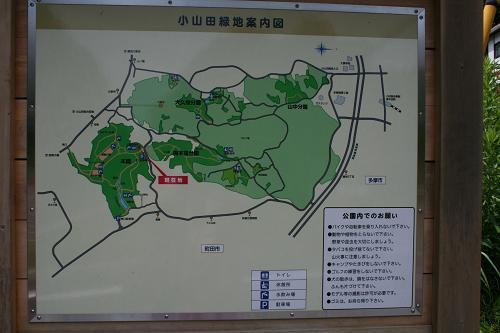 8.7小山田緑地