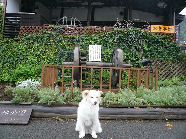 8.29横川駅1