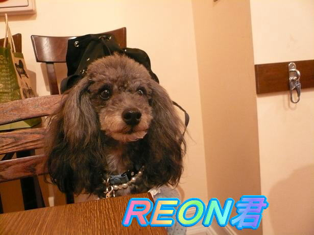 9.11REON君