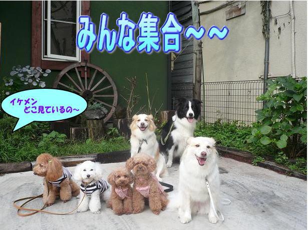 9.12イケメン〜〜