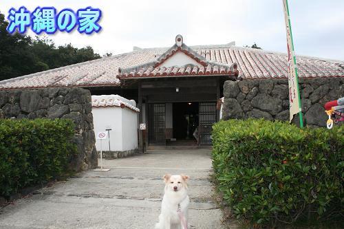 10.7沖縄の家