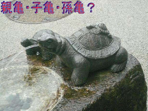 10.7亀亀亀