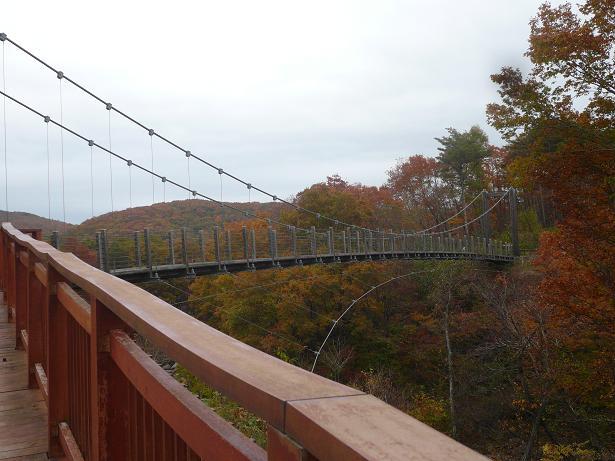 10.30山の中の吊り橋
