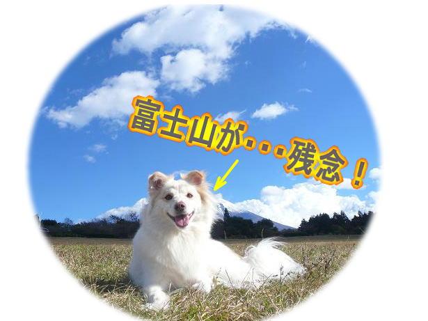 11.12あら富士山が