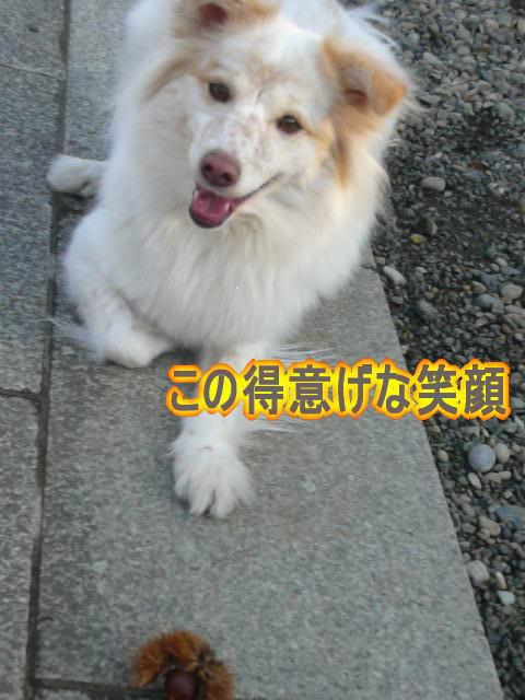 1.5うれしそ〜