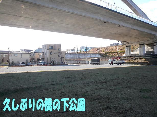 1.17橋の下公園