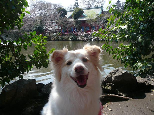 3.25笑顔2
