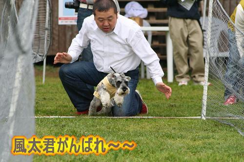 4.27風太君がんばれ〜1