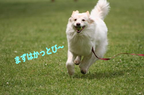 5.8かっとび〜