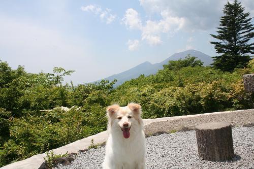 6.14モコと浅間山