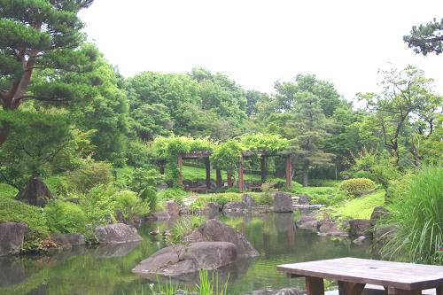 6.28日本庭園