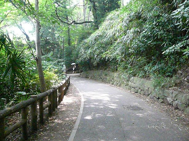 7.15井の頭公園