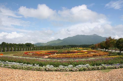 8.29山中湖花の都公園5