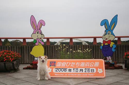 10.26ひたち海浜公園