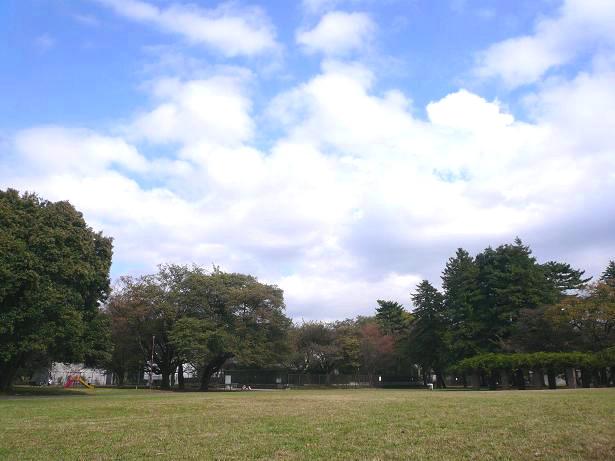 11.5きれいな空だね