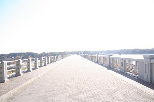 11.21長い橋