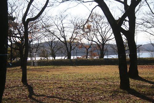 11.21狭山自然公園2