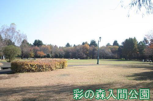 11.26彩の森入間公園
