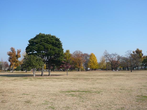 12.4公園